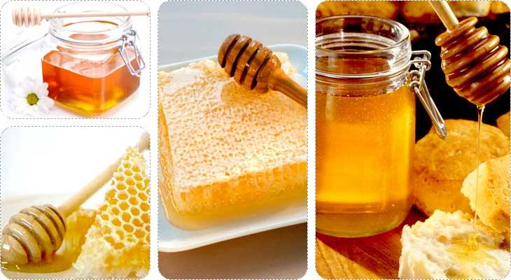 น้ำผึ้งที่ดีที่สุด